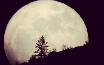 خواطر احزان منتصف الليل الجميلة